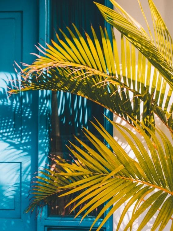 Bali Bio Villas - 144ONTOUR - 144ontour.com