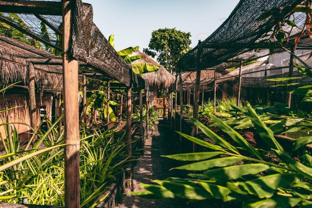 Bali Bamboo Villas - 144ONTOUR - 144ontour.com